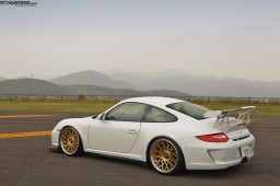 The Check Shop GT3 #5