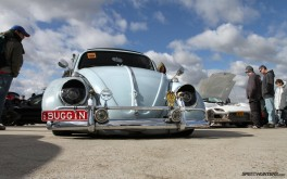 1920x1200 Buggin' BeetlePhoto by Brad Lord