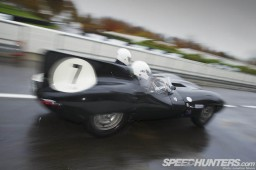 Jaguar_Bloodline-016_D-Type