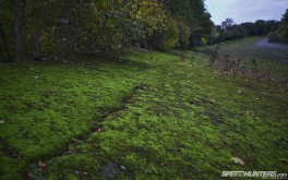 1920x1200 Brooklands bankingPhoto by Jonathan Moore