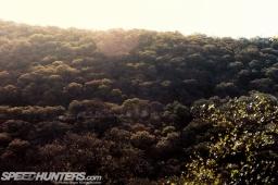 WRC-Leon-10