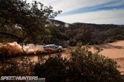 WRC-Leon-14