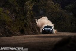 WRC-Leon-17