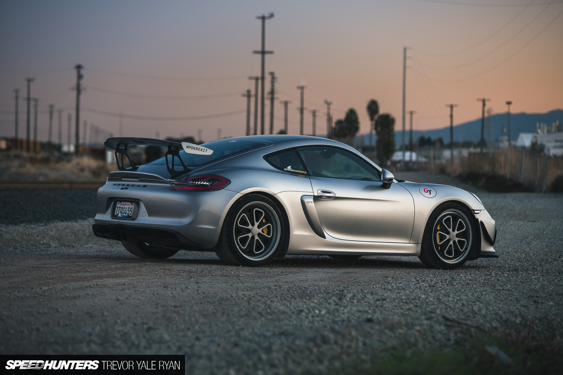Sharks & Recreation: The Unpretentious Porsche