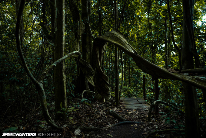 Ron_Celestine_Speedhunters_Tawau_Forest