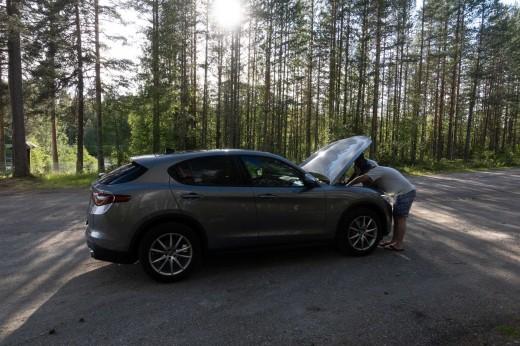 6 reasons swedish rallycross should be on your bucketlist-2