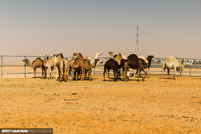 IMG_1333RiyadhAutoSalonCoverage-By-Naveed-Yousufzai