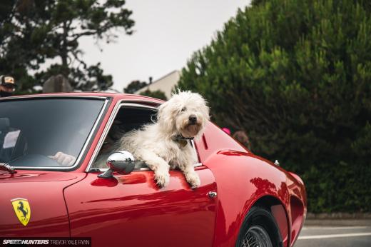 2021-Car-Week-Carspotting_Trevor-Ryan-Speedhunters_020_2412