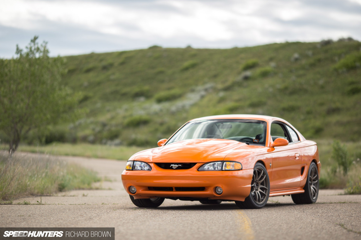 All orange no pulp a different kind of mustang