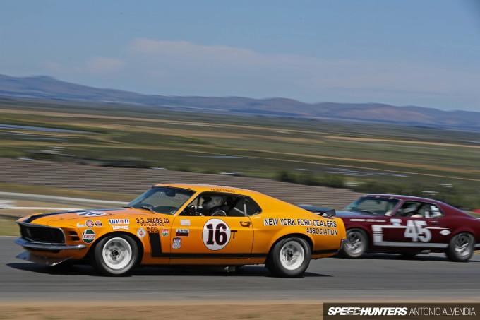 Sonoma Speed Festival SCCA Trans Am Mustang Boss 302